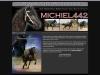 michiel442_lrg